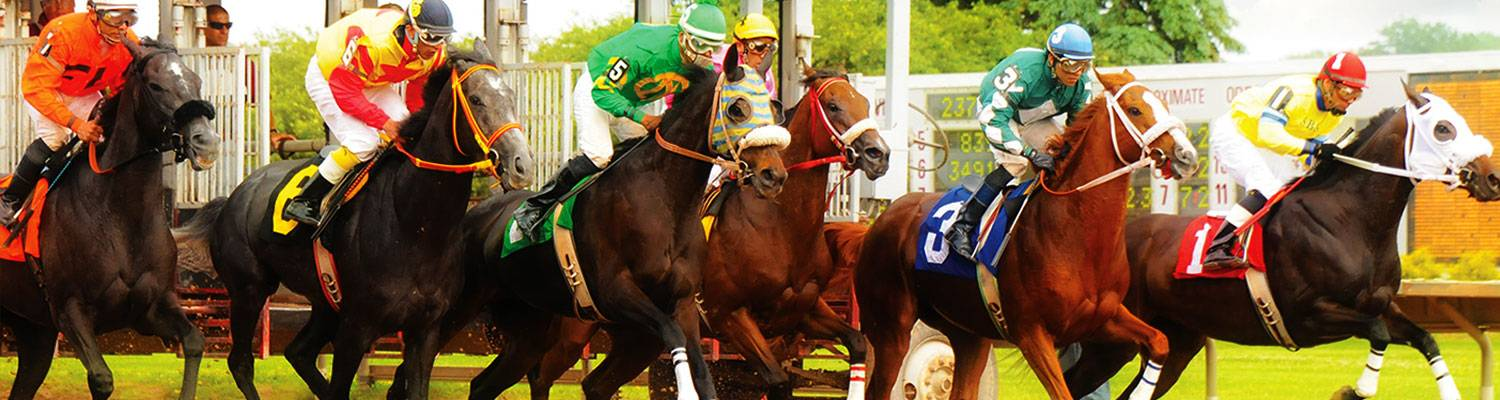 Horse racing at Fingerlakes Gaming